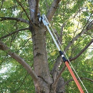 Tree Pruner - Telescopic