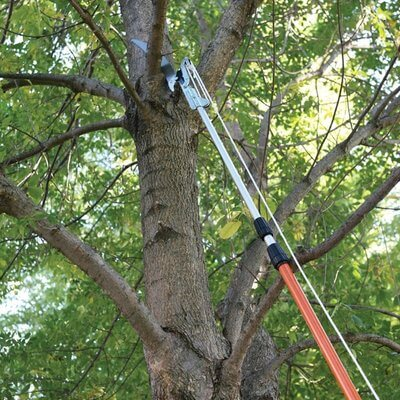 Telescopic Tree Pruner Hire National Tool Hire Shops